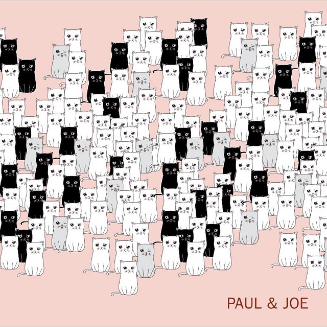 paul & joe beauté autumn 2015